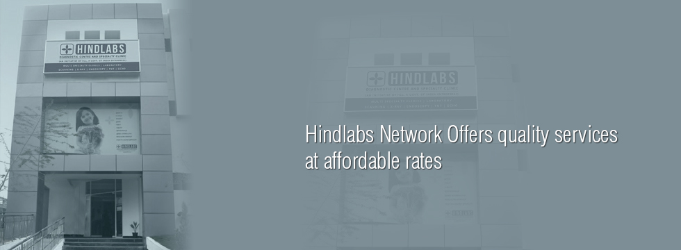 Hindlabs Network Offers quality services at affordable rates